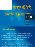 Country's Risk Management