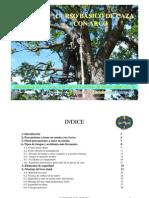 Seguridad Basica en La Caza Con Arco y Montaje Del Tree Stand