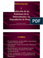 La Deforestacion y REDD_Ronnie de Camino