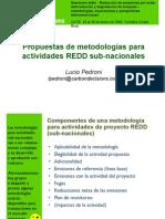 Metodologias Para REDD_Lucio Pedroni