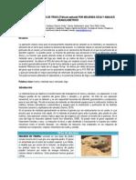 Obtencion de Harina de Trigo (Triticum Sativum) Por Molienda Seca y Analisis Granulometrico