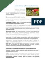 19 Identificacion Visual de Sintomas de Deficiencias Nutricionales