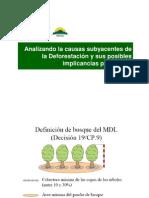 E. Otarola - Analisis de La Deforestacion