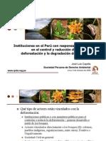 JL Capella - Instituciones en El Peru Resp on Sables Para El Control y Reduccion de La Deforestacion