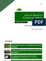 M. Chacon - Ciclo de Vida de Un Proyecto de Carbono