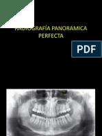 radiografiapanoramicapuntos-110704231745-phpapp01