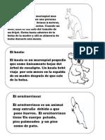 Fichas Animales