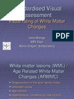 Visual Rating Wm Changes
