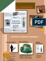 Mal de Chagas- Salud Publica