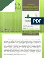 AUMENTO DA RECUPERAÇÃO DE LAVRA NA MINERAÇÃO_MECÂNICA DAS ROCHAS_LUIZ ROCHA