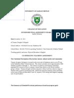 Final Assessment Internship