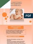 Trabajo de Lactancia Materna