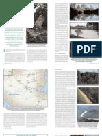 Arqueología del Petén