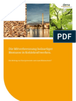 Endbericht Biomassenutzung in Kohlekraftwerken Final