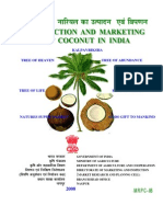 Production Coconut