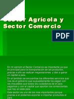 Sector Agrícola y Sector Comercio