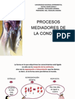 Procesos Mediadores de La Conducta.pptx