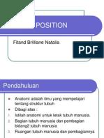 Anatomi Position