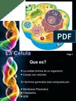 celula diapositivas