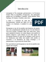 Historia de Bayaguana