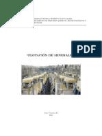 Yianatos - Flotación de Minerales (UTFSM)