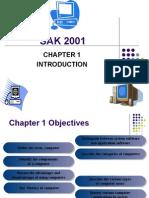 Chapter 1 Sak