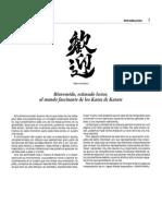 25 katas del karate wshoto kan.pdf