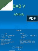 Bab v Amina2