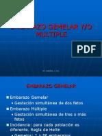 Gemelar_2012