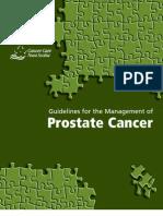 Prostate Guidelines Full Version 2006