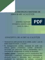 AUDITUL CALIATTII