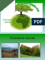Evolutia ecosistemelor