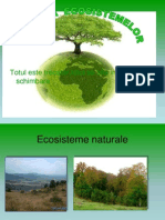 Evolutia ecosistemelor