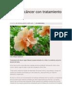 Curar el cáncer con tratamiento natural