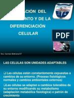 alteracindelcrecimientoydifcelular-100418154836-phpapp01
