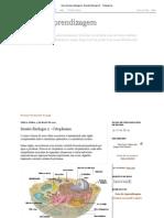 Guia de Aprendizagem_ Sessão Biologia 2 - Citoplasma