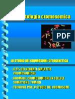 Lez Patol Cromosomiche