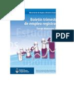 Boletin empleo registrado 2012