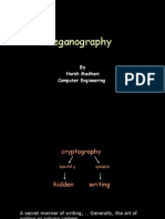 Steganography 111107140802 Phpapp02