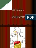 digestie
