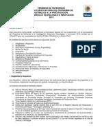 PEI Terminos de Referencia 2013