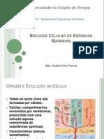 Biologia Celular de Esponjas Marinhas.pptx