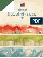 InformeEsradoMedioAmbiente Completo 2011