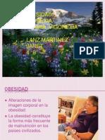 obesidadanorexiabulimiavigorexia-120427210653-phpapp02
