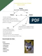 Análise Da Situação Inicial Do Conto o Lobo