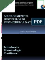 Management Riscuri Introducere