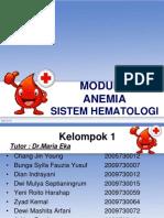 Slide Pleno Hematologi