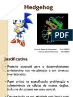 sonichedgehog-121115080846-phpapp02