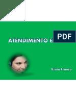 01 A ORGANIZAÇÃO_TENDIMENTO EFICAZ