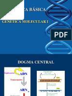 Molecular 1